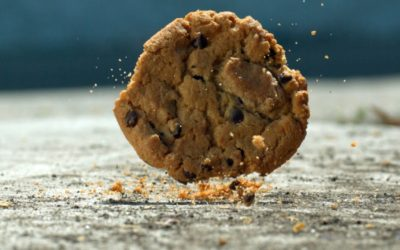 The '5-Second Rule': Fact or Myth?